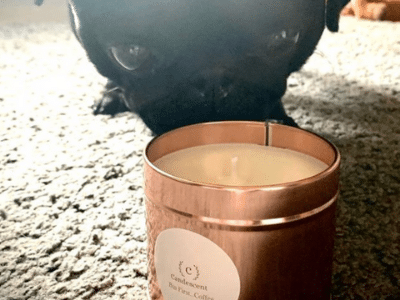 dog with candle